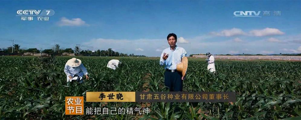 李世曉受訪種業中國